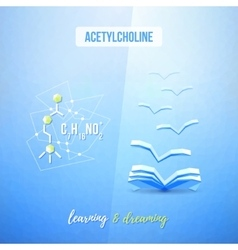 Acetylcholine chemistry low poly educational vector