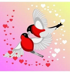 Bullfinch Birds kissing vector image vector image