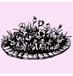 flowers in flowerbed vector image