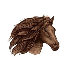 Horse race sport sign wild equine mustang running vector