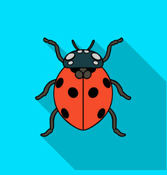 Ladybug icon in flat style isolated on white vector