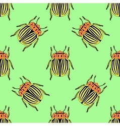 Seamless pattern with colorado potato beetle vector image