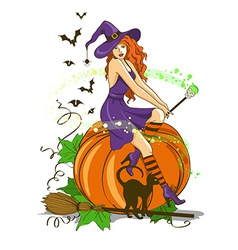 Beautiful witch sitting on the pumpkin vector image