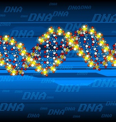 glow dna structure vector image