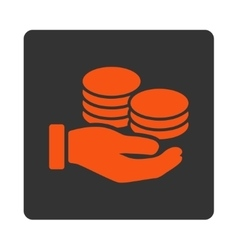 Salary icon vector