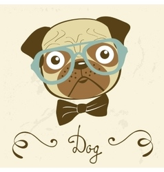 Dog gentleman of an elegant pug vector