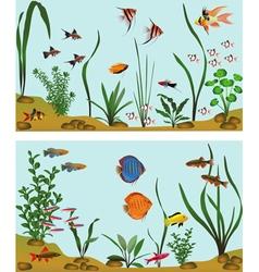 Freshwater aquarium vector