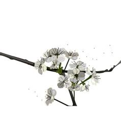 vintage blossom vector image