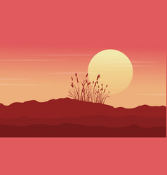 silhouette of desert with grass at morning scenery vector image vector image