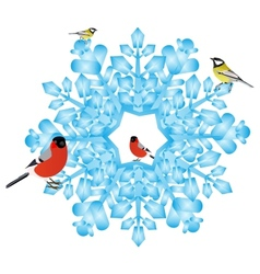 Bullfinch and tits on a snowflake vector image vector image