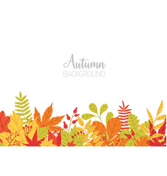 horizontal banner with various colorful autumn vector image vector image