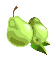 Two ripe green pear on white background vector image