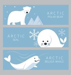 Arctic banner polar bear seal beluga whale vector