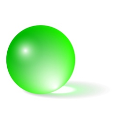 Transparent green sphere vector