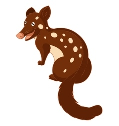Cartoon smiling quoll vector