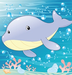 Baby Whale vector image vector image