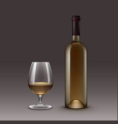 Set of bottles and glasses on background vector