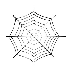 spiderweb silhouette vector image vector image