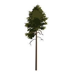 Tree pinetree clip art vector