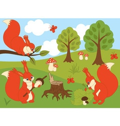 Woodland squirrels vector