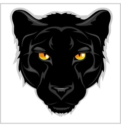 Black panther - on white background vector