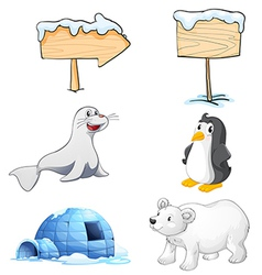 Signboards animals and an igloo at the north pole vector