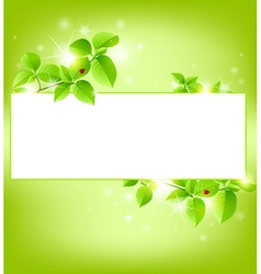 green banner with leaves vector image