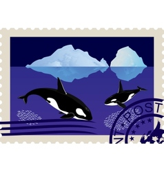 Postage stamp with killer whales vector