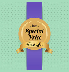 Best offer hot special price advertisement poster vector