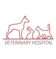 veterinary hospital vector image