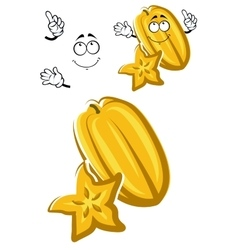 Cartoon carambola fruit with star shaped slice vector