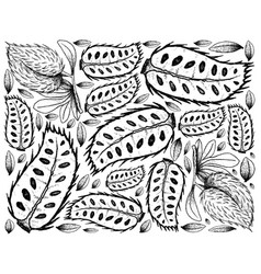 Hand drawn background of ripe soursop fruits vector