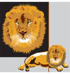 lion animals king vector image vector image