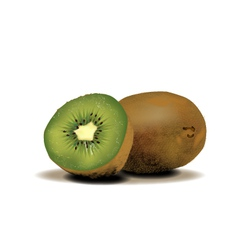 Kiwi graphics vector