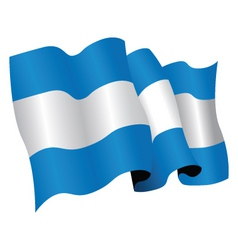 argentina vector image vector image