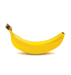 Banana graphics vector