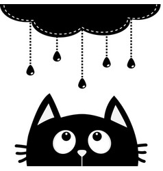 black cat looking up to cloud with hanging shining vector image