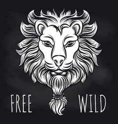 hipster lion on blackboard background vector image vector image