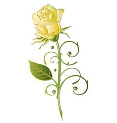 Rose floral vector