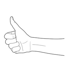 Line of group of human hands showing thumbs up vector
