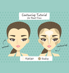 contouring heart face tutorial vector image