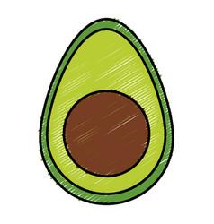 Avocado fresh isolated icon vector