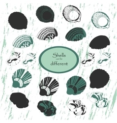 sea shell set vector image