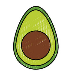 Avocado fresh isolated icon vector