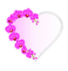 frame heart shaped orchid phalaenopsis purple vector image