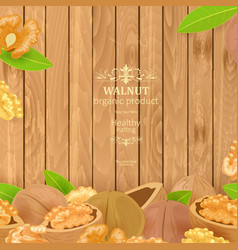 poster with walnuts and green leaves on wooden vector image