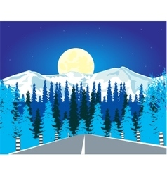 Road in wood in winter vector