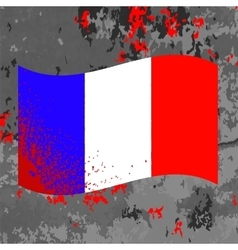 Flag of France and Blood Splatter vector image