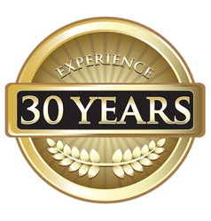 Thirty years experience gold vector