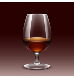 Wine glass isolated transparent vector